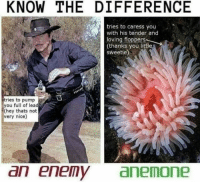 Knowledge is power. YoureWelcome: KNOW THE DIFFERENCE  tries to caress you  with his tender and  loving floppers  loving floppertfle  (thanks you littl  sweetie)  tries to pump  you full of lead  (hey thats not  very nice)  an enemyanemone Knowledge is power. YoureWelcome
