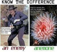 Am I alive: KNOW THE DIFFERENCE  tries to caress you  with his tender and  loving floppers  (thanks you littl  sweetie)  tries to pump  you full of lead  (hey thats not  very nice)  an enemyanemone Am I alive