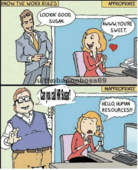 Hello, Work, and Good: KNOW THE WORK RULES  APPROPRIATE  LOOKIN' GOOD  SUSAN.  AWWWYOURE  SWEET.  u/thebasonhoss69  INAPPROPRIATE  HELLO, HUMAN  RESOURCES?