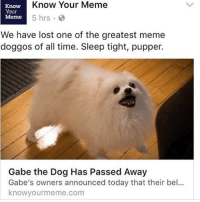 IM LATE BUG RIP DOGGO: Know Your Meme  Know  Your  B  Meme  5 hrs.  We have lost one of the greatest meme  doggos of all time. Sleep tight, pupper.  Gabe the Dog Has Passed Away  Gabe's owners announced today that their bel  know yourmeme.com IM LATE BUG RIP DOGGO