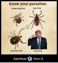 The cure for the last tick is a blue wave.: Know your parasites.  Brown Dog Tick  Deer Tick  Lone Star Tick  Luna Tick  American News X The cure for the last tick is a blue wave.