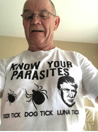 Deer, Thank You, and Trump: KNOW YOUR  PARASITES  DEER TICK DOG TICK LUNA TICK Please like and share our page Boycott All Things Trump  Thank you!
