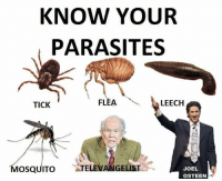 Can I get a R'amen?!  -N: KNOW YOUR  PARASITES  FLEA  LEECH  TICK  MOSQUITO  ATELEVANGELIST  JOEL  OSTEEN Can I get a R'amen?!  -N