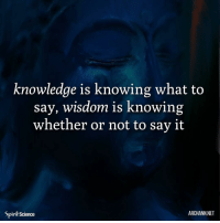 Memes, Say It, and Buddha: knowledge is knowing what to  say, wisdom is knowing  whether or not to say it  Spirit Science  ARCHANN.NET ❤️❤️. Art by @archannair . . . . . . . buddha mindfulness empowerment spiritualawakening consciousness higherself selfdevelopment universe zen lawofattraction successmindset meditation spiritual enlightenment loveyourself focus thoughtprocess foodforthought quotestoliveby relationshipgoals mindset goodvibesonly amen quotesaboutlife spiritualdevelopment selflove pray ascension