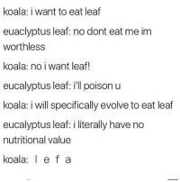 bouTTA HIT 500k bois im 100 away and i have 900 follow requests so dont even bother being a cunt and unfollowing xo: koala: i want to eat leaf  euaclyptus leaf: no dont eat me im  worthless  koala: no i want leaf!  eucalyptus leaf: ill poison u  koala: i will specifically evolve to eat leaf  eucalyptus leaf: i literally have no  nutritional value  koala e f a bouTTA HIT 500k bois im 100 away and i have 900 follow requests so dont even bother being a cunt and unfollowing xo