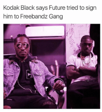Future, Memes, and Gang: Kodak Black says Future tried to sign  him to Freebandz Gang future tried signing kodakblack to his label freebandgang via @hotfreestyle