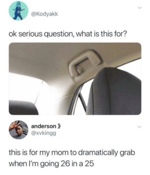 What Is, MeIRL, and Mom: @Kodyakk  ok serious question, what is this for?  anderson  @xvkingg  this is for my mom to dramatically grab  when I'm going 26 in a 25 Meirl