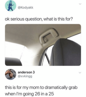 """Shit, What Is, and Mom: @Kodyakk  ok serious question, what is this for?  anderson  @xvkingg  this is for my mom to dramatically grab  when I'm going 26 in a 25 I call it the """"Oh Shit"""" handle"""