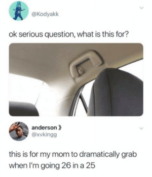 "More commonly known as the ""oh shit"" handle via /r/memes https://ift.tt/309MWQu: @Kodyakk  ok serious question, what is this for?  anderson  @xvkingg  this is for my mom to dramatically grab  when I'm going 26 in a 25  > More commonly known as the ""oh shit"" handle via /r/memes https://ift.tt/309MWQu"
