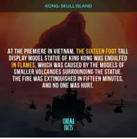 What would you do if you meet Kong in real life? - film kong kongscullisland tomhiddleston samuelljackson heathledger movie cultfilm cultmovie photo blackandwhite black white movie actor oscar goodmovie makeupartist burton smile cinephilecommunity camera makeup director timburton cinema movienight film films: KONG: SKULL ISLAND  AT THE PREMIERE IN VIETNAM, THE SIXTEEN FOOT TALL  DISPLAY MODEL STATUE OF KING KONG WAS ENGULFED  IN FLAMES, WHICH WAS CAUSED BY THE MODELS OF  SMALLER VOLCANOES SURROUNDING THE STATUE  THE FIRE WAS EXTINGUISHED IN FIFTEEN MINUTES,  AND NO ONE WAS HURT.  CINEMA  FACTS What would you do if you meet Kong in real life? - film kong kongscullisland tomhiddleston samuelljackson heathledger movie cultfilm cultmovie photo blackandwhite black white movie actor oscar goodmovie makeupartist burton smile cinephilecommunity camera makeup director timburton cinema movienight film films