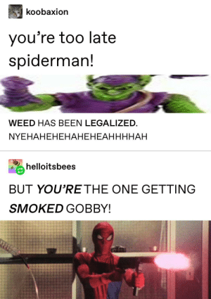 What in the goddamn fuck: koobaxion  you're too late  spiderman!  WEED HAS BEEN LEGALIZED  NYEHAHEHЕНАНЕНЕАННННАН  helloitsbees  BUT YOU'RE THE ONE GETTING  SMOKED GOBBY! What in the goddamn fuck