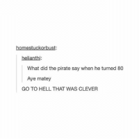 Memes, Pirate, and Hell: kor  helianthi:  What did the pirate say when he turned 80  Aye matey  GO TO HELL THAT WAS CLEVER @ number 6 same