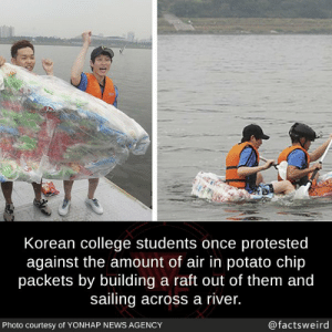 College, Memes, and News: Korean college students once protested  against the amount of air in potato chip  packets by building a raft out of them and  sailing across a river.  Photo courtesy of YONHAP NEWS AGENCY  @factsweird This is genius via /r/memes https://ift.tt/2QkI5mX