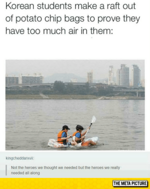 Too Much, Tumblr, and Blog: Korean students make a raft out  of potato chip bags to prove they  have too much air in them:  kingcheddarxvii:  Not the heroes we thought we needed but the heroes we really  needed all along  THE META PICTURE epicjohndoe:  The Heroes We Need