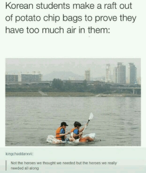 Too Much, Heroes, and Potato: Korean students make a raft out  of potato chip bags to prove they  have too much air in them:  kingcheddarxvii  Not the heroes we thought we needed but the heroes we really  needed all along