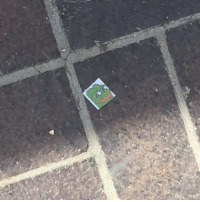School, Target, and Tumblr: korolevcross:  mayor-lys:  found a rare pepe on the ground at school  that is a common pepe. it's literally the most common pepe
