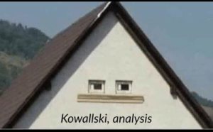 Wtf, Decipher, and Analysis: Kowallski, analysis Me, trying to decipher wtf is going on