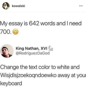 Dank, Memes, and Target: kowalski  My essay is 642 words and I need  700  King Nathan, XVI  @RodriguezDaGood  Change the text color to white and  Wisjdlsjzoekoqndoewko away at your  keyboard Never done this Does it Work? by NearbyDANKSTER MORE MEMES