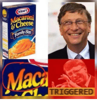 Bill Gates is Triggered!: KRAFT  Cheese  mily Size  NAL FLAVOR  Maca  TRIGGERED Bill Gates is Triggered!