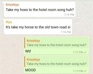 Hoes, Huh, and Wtf: Krisshiya  Take my hoes to the hotel room song huh?  1:15 PM  24  Riya  It's take my horse to the old town road si  1:16 PM  Krisshiya  Take my hoes to the hotel room song huh?  04.  Wtf  1:17 PM  Krisshiya  Take my hoes to the hotel room song huh?  МOOD  1:17 PM That's one way to hear it.