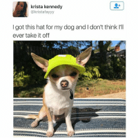 SWIPE ➡️ for majestication | For more @aranjevi: krista kennedy  kristafayyy  I got this hat for my dog and don't think I'll  ever take it off SWIPE ➡️ for majestication | For more @aranjevi