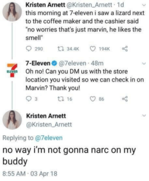 "Live and let live: Kristen Arnett @Kristen_Arnett 1d  this morning at 7-eleven i saw a lizard next  to the coffee maker and the cashier said  no worries that's just marvin, he likes the  smell""  t 34.4K  194K  290  7-Eleven@7eleven 48m  BVE  Oh no! Can you DM us with the store  location you visited so we can check in on  Marvin? Thank you!  t 16  3  86  Kristen Arnett  @Kristen Arnett  Replying to @7eleven  no way i'm not gonna narc on my  buddy  8:55 AM 03 Apr 18 Live and let live"