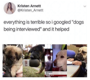"That's just adorable! via /r/wholesomememes https://ift.tt/2Pfd5Zi: Kristen Arnett  @Kristen_Arnett  everything is terrible so i googled ""dogs  being interviewed"" and it helped  BOUNCE  Dog  89.3 That's just adorable! via /r/wholesomememes https://ift.tt/2Pfd5Zi"