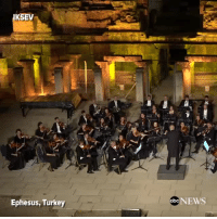 """darnni: girlsopeachy:  askinnyblackman:  very important orchestra performance. please watch  Orchestra: *plays*Crowd: *silent*Dog: *walks on stage*Crowd: *applauds*   Dog: *lays down* Crowd: """"more applause* : KSEV  Ephesus, Turkey  abe NEWS darnni: girlsopeachy:  askinnyblackman:  very important orchestra performance. please watch  Orchestra: *plays*Crowd: *silent*Dog: *walks on stage*Crowd: *applauds*   Dog: *lays down* Crowd: """"more applause*"""