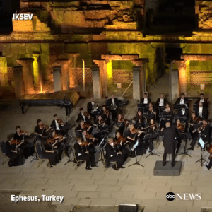 News, Tumblr, and Blog: KSEV  Ephesus, Turkey  abe NEWS girlsopeachy:  askinnyblackman:  very important orchestra performance. please watch  Orchestra: *plays*Crowd: *silent*Dog: *walks on stage*Crowd: *applauds*
