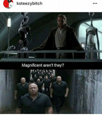 ksteezybitch  Magnificent aren't they? Star wars x Alex jones meme 😻😻😻 🔹 🔺 funny lol lmao hilarious jokes nochill lmfao meme memes haha funnyshit bruh dead oof lmfao edgy dank dankmemes kek savage savagememes memesdaily ironic satire comedy feminismiscancer cancermemes idubbbz goofed
