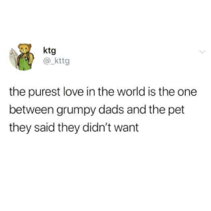 Dank, Love, and World: ktg  @ kttg  the purest love in the world is the one  between grumpy dads and the pet  they said they didn't want