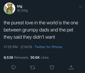 Iphone, Love, and Twitter: ktg  @_kttg  the purest love in the world is the one  between grumpy dads and the pet  they said they didn't want  11:25 PM 2/14/19 Twitter for iPhone  8,538 Retweets 30.6K Likes the definition of purity ☺️