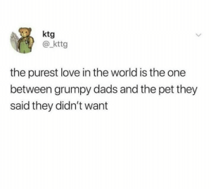 they always end up on good terms :): ktg  @kttg  the purest love in the world is the one  between grumpy dads and the pet they  said they didn't want they always end up on good terms :)