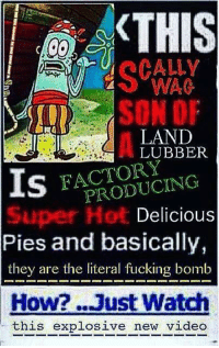 Funny, New Videos, and Pie: KTHIS  LAND  LUBBER  FACTORY  IS  Delicious  Pies and basically,  they are the literal fucking bomb  How? ...Just Watch  this explosive new video
