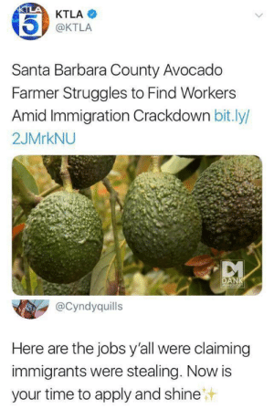 Jobs! We got JOBS for you!: KTLA  KTLA  @KTLA  Santa Barbara County Avocado  Farmer Struggles to Find Workers  Amid Immigration Crackdown bit.ly/  2JMRKNU  DANK  MEMEOLOGY  @Cyndyquills  Here are the jobs y'all were claiming  immigrants were stealing. Now is  your time to apply and shine Jobs! We got JOBS for you!