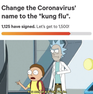 Kung Flu Fighting: Kung Flu Fighting