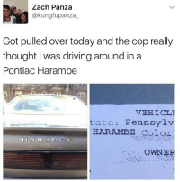 Cop really believed it.. Harambe 😩😂💀 WSHH: kung fupanza  Got pulled over today and the cop really  thought I was driving around in a  Pontiac Harambe  VEHICL1  tate Pennsylv  HARAMBE Celor  HAR A M 13 E  OWNER Cop really believed it.. Harambe 😩😂💀 WSHH