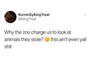 Animals, Shit, and Tumblr: KurrenSyKing Treal  @KingTreal  Why the zoo charge us to look at  animals they stole? this ain't even yall  shit elevatedmindsoulbody:  angelsunawares:  angelsunawares:     And it keeps on going