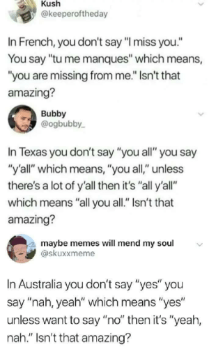 "AMAZING, by itsyaboii101 MORE MEMES: Kush  @keeperoftheday  In French, you don't say ""l miss you.""  You say ""tu me manques"" which means,  ""you are missing from me."" Isn't that  amazing?  Bubby  @ogbubby  In Texas you don't say ""you all"" you say  ""y'all"" which means, ""you all,"" unless  there's a lot of y'all then it's ""all y'all""  which means ""all you all."" Isn't that  amazing?  maybe memes will mend my soul  skuxxmeme  In Australia you don't say ""yes"" you  say ""nah, yeah"" which means ""yes  unless want to say ""no"" then it's ""yeah,  nah."" Isn't that amazing? AMAZING, by itsyaboii101 MORE MEMES"