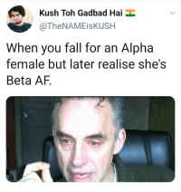 Af, Fall, and Maps: Kush Toh Gadbad Hai  @TheNAMEisKUSH  When you fall for an Alpha  female but later realise she's  Beta AF.
