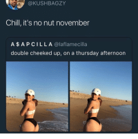 Chill, Funny, and Life: @KUSHBAGZY  Chill, it's no nut november  A$APCILLA @laflamecilla  double cheeked up, on a thursday afternoon Don't let these dishwashers make you risk it all and lose the hardest challenge of your life