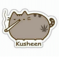 Pusheen, she changed a bit after visiting Colorado.: Kusheen Pusheen, she changed a bit after visiting Colorado.