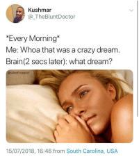 "Blackpeopletwitter, Crazy, and Rude: Kushmar  @_TheBluntDoctor  ""Every Morning""  Me: Whoa that was a crazy dream  Brain(2 secs later): what dream?  @sideofricepilaf  15/07/2018, 16:46 from South Carolina, USA <p>How rude (via /r/BlackPeopleTwitter)</p>"