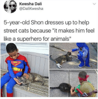 """Respect for this kid 🙏💯 WSHH: Kwesha Dali  @DaliKwesha  5-year-old Shon dresses up to help  street cats because """"it makes him feel  like a superhero for animals"""" Respect for this kid 🙏💯 WSHH"""