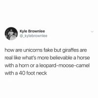 Fake, Memes, and Horse: Kyle Brownlee  kylebrownlee  TAMA  how are unicorns fake but giraffes are  real like what's more believable a horse  with a horn or a leopard-moose-camel  with a 40 foot neck Tru