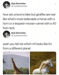 Fake, Memes, and Yeah: Kyle Brownlee  ylebrownlee  how are unicorns fake but giraffes are real  like what's more believable a horse with a  horn or a leopard-moose-camel with a 40  foot neck  Kyle Brownlee  kylebrownlee  yeah you tell me which mf looks like it's  from a different planet My spirit animal is a horned giraffe (@kylebrownlee )