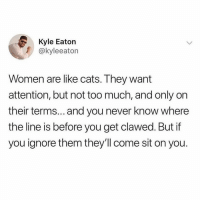 Cats, Too Much, and Women: Kyle Eaton  @kyleeaton  Women are like cats. They want  attention, but not too much, and only orn  their terms... and you never know where  the line is before you get clawed. But if  you ignore them they'll come sit on you. Sitting on @boywithnojob since 2012