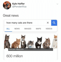 Cats, News, and Videos: Kyle Hoffer  @Ponderifica  Great news  how many cats are there  ALL NEWS IMAGES MAPS VIDEOS  www.pet-happy.com  600 million so many cats... i have to cuddle them all 😻