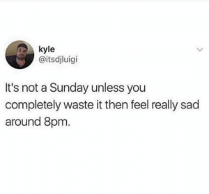 : kyle  @itsdjluigi  It's not a Sunday unless you  completely waste it then feel really sad  around 8pm