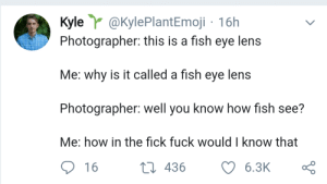 me irl: Kyle @KylePlantEmoji 16h  Photographer: this is a fish eye lens  Me: why is it called a fish eye lens  Photographer: well you know how fish see?  Me: how in the fick fuck would I know that  t 436  6.3K  16 me irl